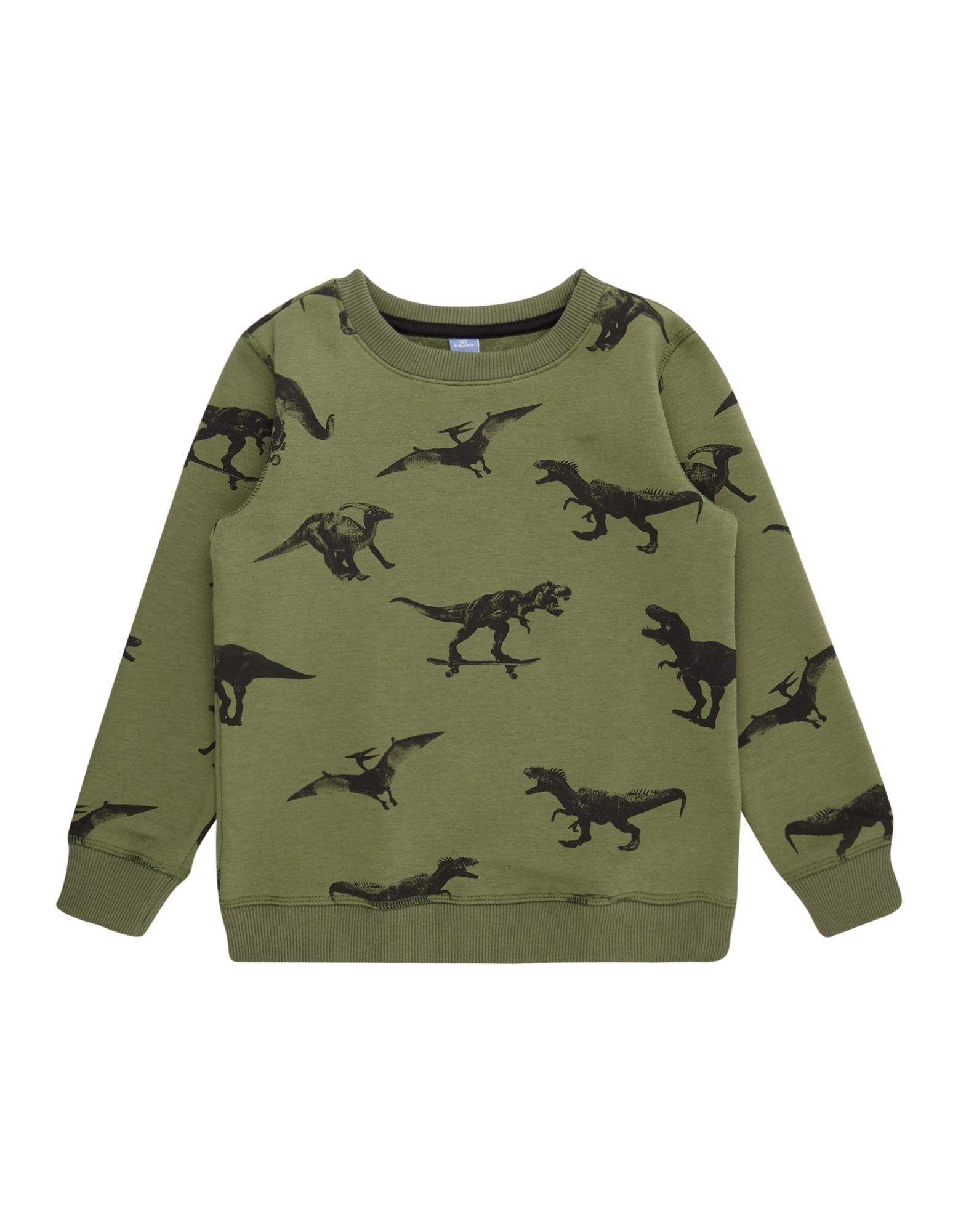 Jungen Pullover mit Dino-Prints  | 81481191980503